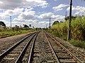 Pátio da Estação Ferroviária de Salto - Variante Boa Vista-Guaianã km 210 - panoramio - Amauri Aparecido Zar… (1).jpg