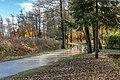 Pörtschach Halbinselpromenade im Landschaftsschutzgebiet 18112019 7519.jpg
