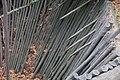 Pöytyä sudenkuoppa 05.jpg