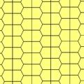 P5-type1 p4g.png