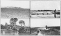 PSM V82 D112 Photo montage of the effect of rivers on life in china.png