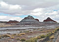 Painted Desert - Arizona (5410693409).jpg