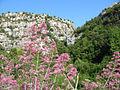 Pantalica (Primavera).jpg