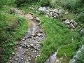 Parco della Burcina-IMG 0849.JPG
