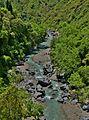 Parco fluviale dell'Alcantara 03.JPG