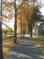 Park - panoramio (123).jpg