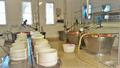 Parmigiano-Reggiano Factory.png