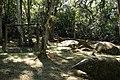 Parque da Cantareira-Playground.jpg