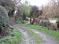 Path beside Betton Strange Hall (Dec' 2007) - geograph.org.uk - 626980.jpg