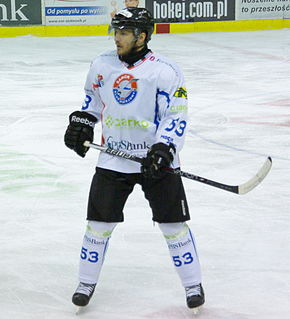 Pavel Mojžíš Czech ice hockey player
