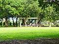 Pavilion under Chinese Banyan.jpg
