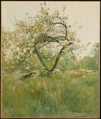 Peach Blossoms—Villiers-le-Bel