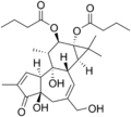 Phorbol 12,13-dibutyrate.png