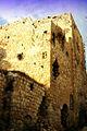 PikiWiki Israel 16060 Castle (alElea altaweela).jpg