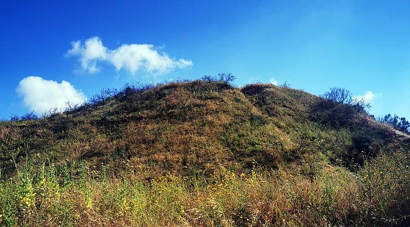המצודה האשורית בראשון לציון