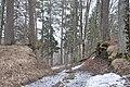 Plāteres pilskalns, Madlienas pagasts, Ogres novads, Latvia - panoramio (5).jpg