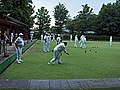 Playing bowls-KayEss-2.jpeg