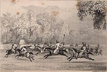 Drawing of polo ponies galloping