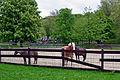 Ponyhof, Grugapark Essen.jpg