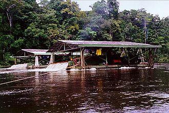 """Potaro River - A gold dredger (known locally as a """"missile"""") on the Potaro River."""
