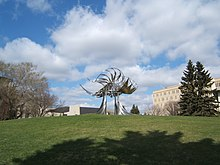 Prairie Chicken on University of Calgary campus.jpg
