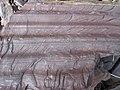 Proglacial lacustrine rhythmitic argillite (varvite) (Konnarock Formation, Neoproterozoic, ~750 Ma; Grassy Branch Outcrop - Rt. 603 roadcut, Smyth County, Virginia, USA) 4 (30253429760).jpg