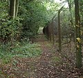 Public Footpath to Ifield at Lambs Green, West Sussex - geograph.org.uk - 59701.jpg