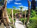 Puerto Galera's Mangrove Park - panoramio (1).jpg