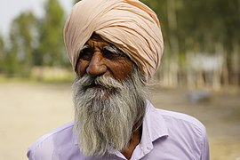 Punjabi turbaned man - 3.jpg