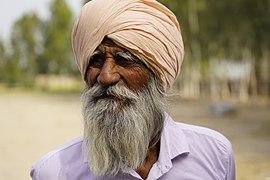 Punjabi turbaned man - 3.jpg