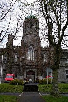 Status of the Irish language - Wikipedia
