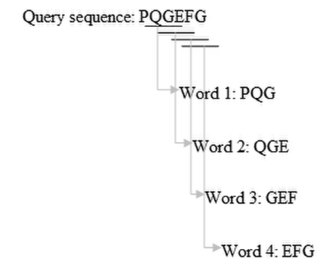 BLAST - Image: Query word