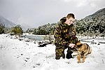 RNZAF military working dog in the snow during 2011.jpg