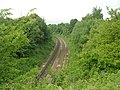 Railway Line from New Pudsey to Bradford - geograph.org.uk - 1362881.jpg
