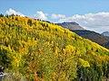 Rd550 Durango to Silverton - panoramio - Frans-Banja Mulder.jpg