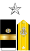 Rear Admiral (lower half) O7