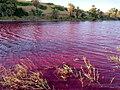 Red Waters of Lake Motro (24468521226).jpg