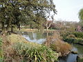 Regent's Park Queen Mary Gardens lake.JPG