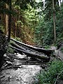 Reinecker Creek Herald Provincial Park (1292466988).jpg