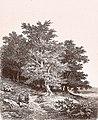 Remigius Adrianus van Haanen 068 (40450944321).jpg