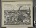 Residence, Brewery and Sale and Exchange of George Roos, Hickory St., Near Broadway - Buffalo, N.Y. NYPL1584511.tiff
