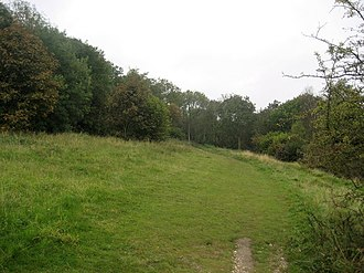 Bacombe and Coombe Hills - Ridgeway on Bacombe Hill