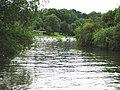 River Avon near Pershore - geograph.org.uk - 859813.jpg