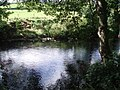River Nidd - geograph.org.uk - 1467249.jpg