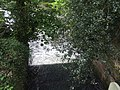 River Stour - downstream weir at Hyde Farm - geograph.org.uk - 798638.jpg