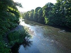 River Taff at Radyr.JPG