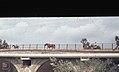 River bridge near Lake Medina to where turtle taken, Jerez. 1975. River Guadalete. Less polluted than Lake Medina (37708404176).jpg