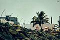 Rock Beach.JPG
