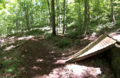 Rocky Knob trail feature.png