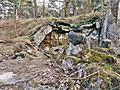 """Ruinen im Naturschutzgebiet """"Besenhorster Sandberge und Elbsandwiesen"""" (6).jpg"""